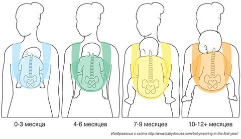 Спинка малыша должна быть физиологично скруглена